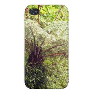Green Tree Fern iPhone 4 Case