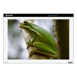 Green Tree Frog 2 Laptop Skin