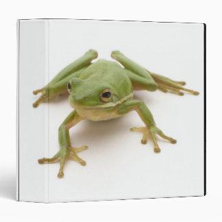 Green Tree Frog 3 Ring Binder