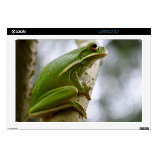 "Green Tree Frog 3 Skin For 17"" Laptop"