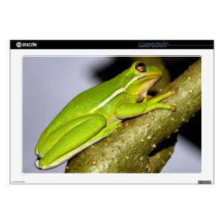 "Green Tree Frog 4 Skins For 17"" Laptops"