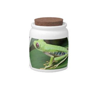 Green Tree Frog Candy Jar
