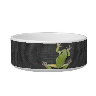 Green Tree Frog Cat Dish