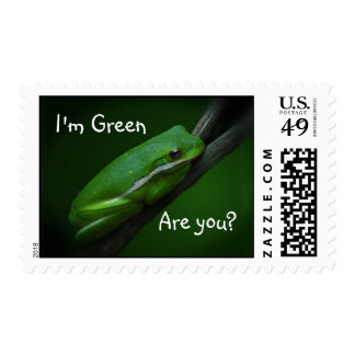 Green Tree Frog Ecology Stamp