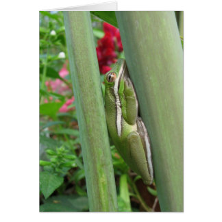 Green Tree Frog Flowers Card