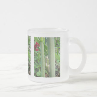 Green Tree Frog (Hyla cinera) Frosted Glass Coffee Mug