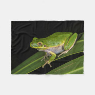Green Tree Frog (Hyla cinerea) 2 Fleece Blanket