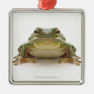Green tree frog (Hylidae cinerea) Metal Ornament