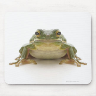Green tree frog (Hylidae cinerea) Mouse Pad