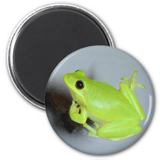 Green Tree Frog Image 2 Inch Round Magnet