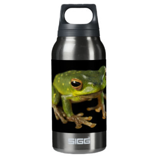 Green Tree Frog Insulated Water Bottle