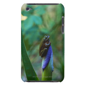 Green Tree Frog on Iris Barely There iPod Case