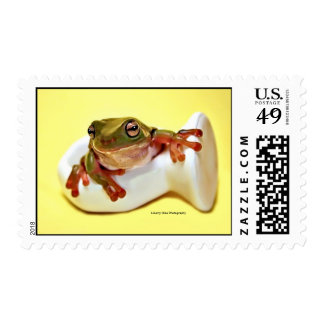 Green Tree Frog Postage Stamp