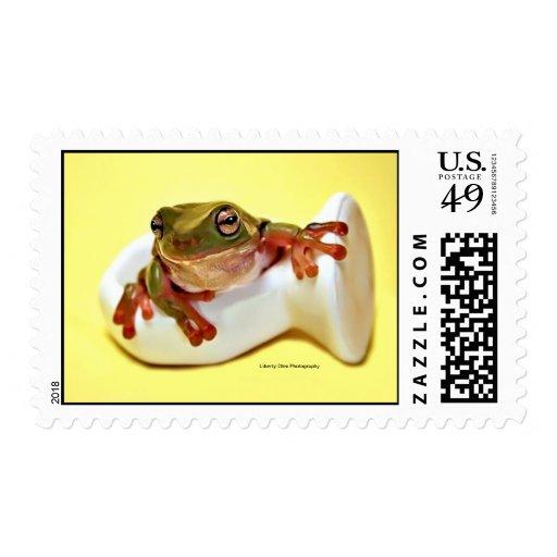 Green Tree Frog Postage Stamp