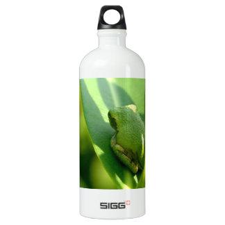 Green Tree Frog SIGG Traveler 1.0L Water Bottle