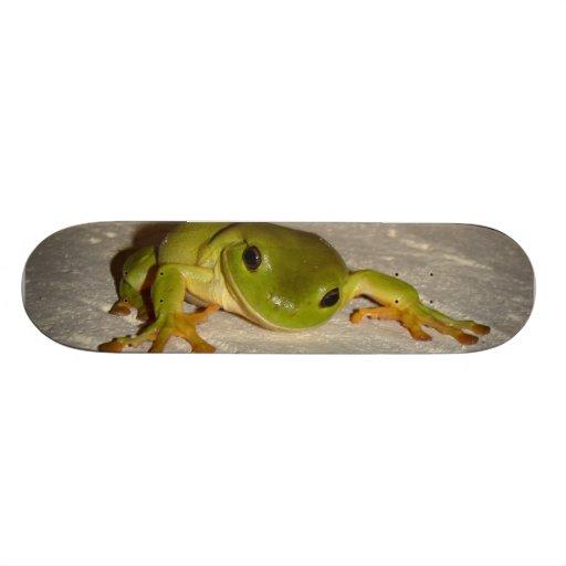 Green Tree Frog Skate Board