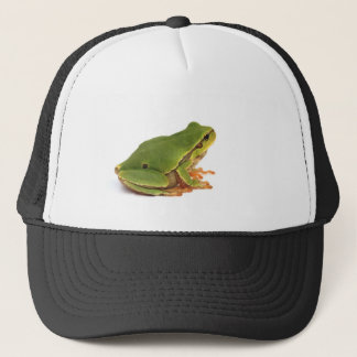 green tree frog trucker hat