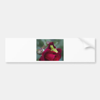Green Tree Frogs and Red Roses Bumper Sticker