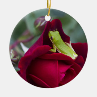 Green Tree Frogs and Red Roses Ceramic Ornament