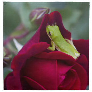 Green Tree Frogs and Red Roses Napkin