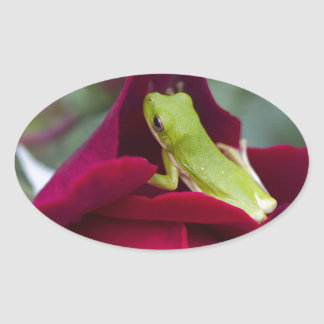 Green Tree Frogs and Red Roses Oval Sticker