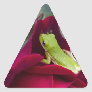 Green Tree Frogs and Red Roses Triangle Sticker