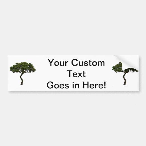 Green tree informal upright photograph car bumper sticker