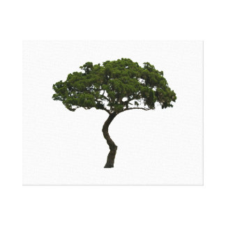 Green tree informal upright photograph canvas print