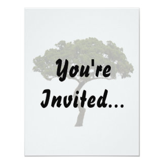 Green tree informal upright photograph card
