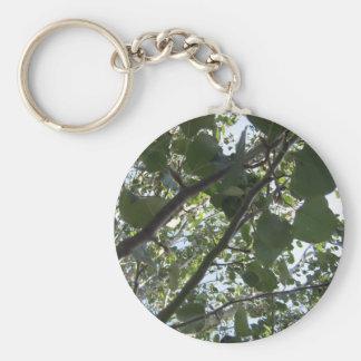 Green Tree Photography Keychain