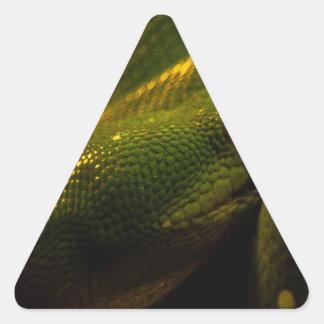 green tree python eye triangle sticker