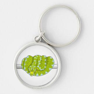 Green Tree Python keychain
