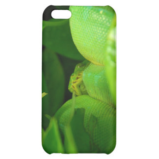 green tree python snake cover for iPhone 5C