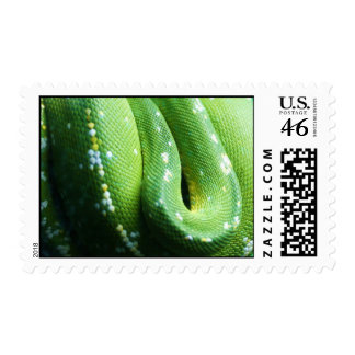 Green Tree Python Stamps