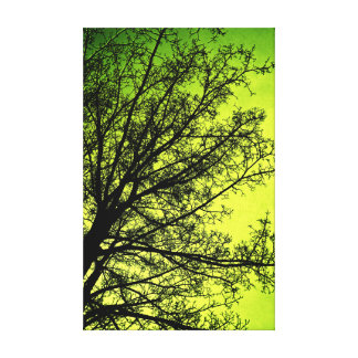 Green Tree Silhouette canvas print