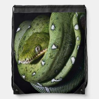 Green tree snake emerald boa in Bolivia Drawstring Backpack