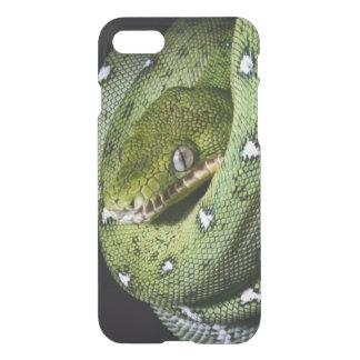 Green tree snake emerald boa in Bolivia iPhone 8/7 Case