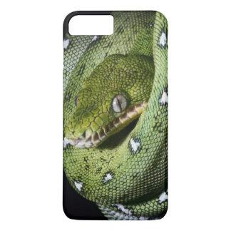 Green tree snake emerald boa in Bolivia iPhone 8 Plus/7 Plus Case