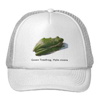 Green Treefrog, Hyla cinera Trucker Hat