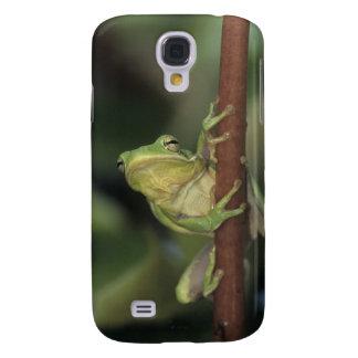 Green Treefrog, Hyla cinerea, adult on yellow Samsung Galaxy S4 Cover