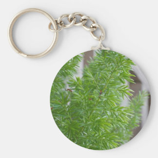 Green Trees Keychain