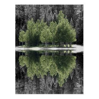 Green Trees Postcard
