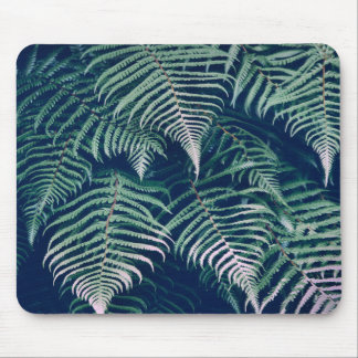 Green Tropical Fern Leaves Natural Pattern Mouse Pad
