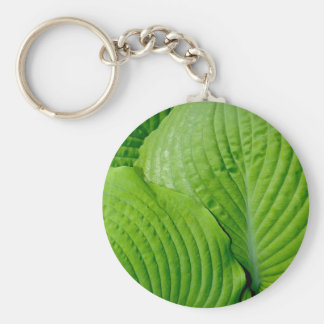 Green tropical leaves keychain