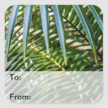 Green Tropical Leaves Square Sticker