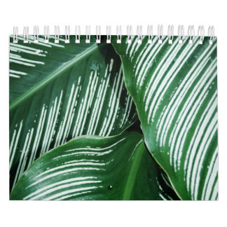 Green Tropical Leaves with White Stripes Closeup Calendar