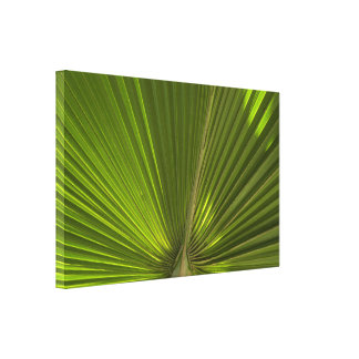 Green Tropical Palm Frond Wrapped Canvas Print