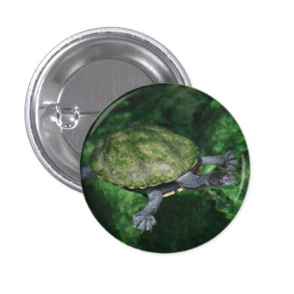 Green Turtle Button Pin