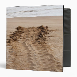 Green Turtle Chelonia mydas agassisi) Tracks Binder
