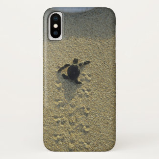 Green Turtle, (Chelonia mydas), hatchling iPhone X Case